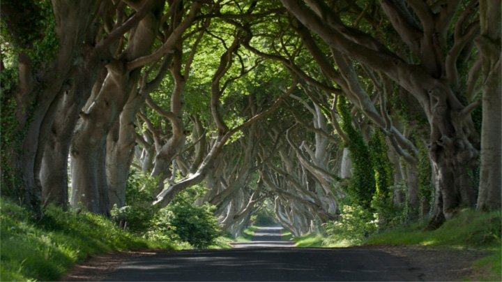 Book the Game of Thrones Tour From Dublin | Wild Rover Tours